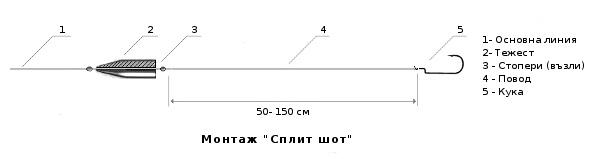 сплит шот
